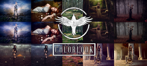 Action: Color-Looks by Darkraven002