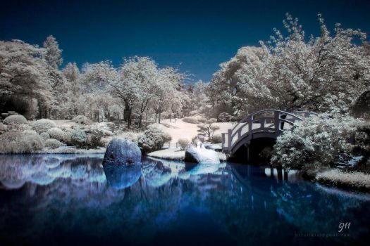 Infrared park by 911OFFICIAL