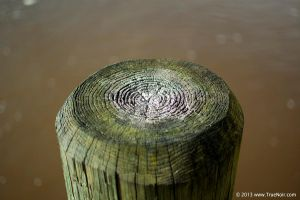 Wooden pole stock image 001 by NoirArt