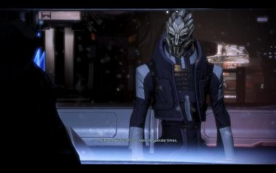 ME3 Normandy - Primarch Adrien Victus 2 by chicksaw2002