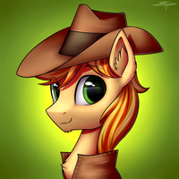 [COMMISSION] Braeburn by Setharu