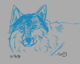 Wolf Practice by valued-vestige