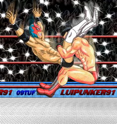 This Powerbomb will turn the fight to my favor S9 by Luipunker91