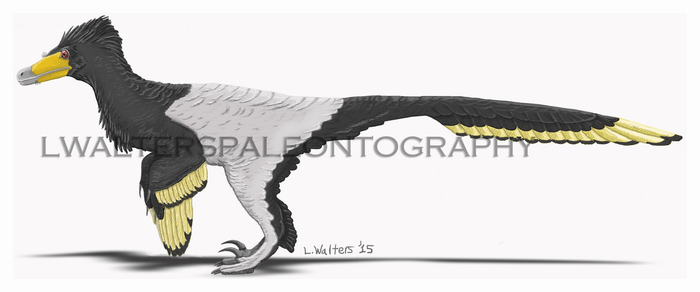 Senter and Robins Velociraptor Update 2017 by LWPaleoArt