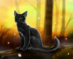 Warriors: Hollyleaf by Marshcold