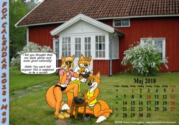 Fox Calendar 2018 - May by micke-m