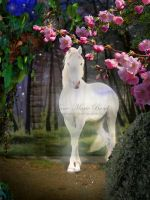 Majestic White Horse by slickchic