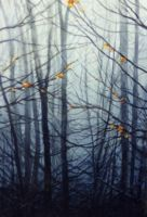 Damp Trees by spoof-or-not-spoof