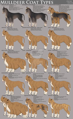 Mulldeer Coat Lengths, Textures, And Modifiers