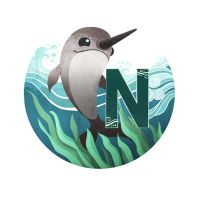 N is for Narwhal by TLCook