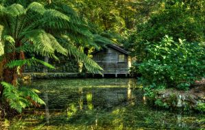 In The Gardens by daniellepowell82
