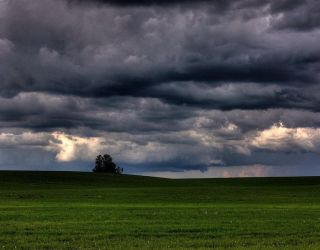 Stormy Weather by wilddoug