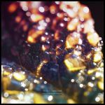 Morning Glitter by Lilyas