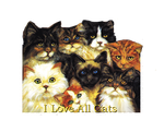 I Love All Cats by Loulou13