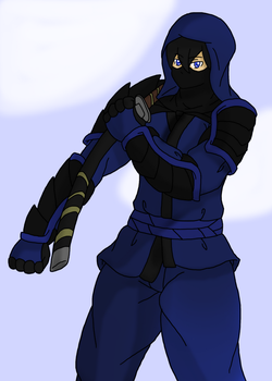 Request: Ninja by zeroviks