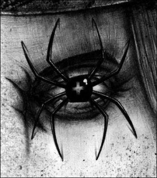 Spiders of my Eyes by demiurge