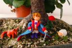 Little Prince and company by MirachRavaia