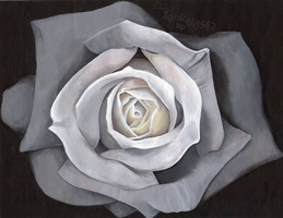 Acrylic Rose by Sonicgirl582