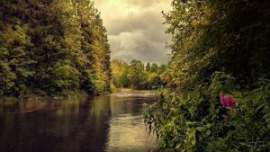August River by Pajunen