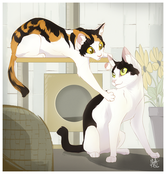 Hima and Coco by AliceLGagne