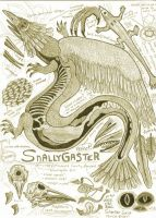 Snallygaster Anatomy Illustration by Kway100