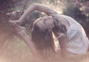 stretching in the sunlight by baravavrova