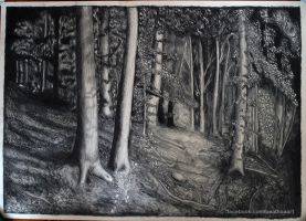 forest 2 by beathaart