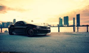 Camaro SS - Angry bee by dejz0r