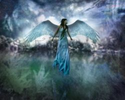Wings by Taurina