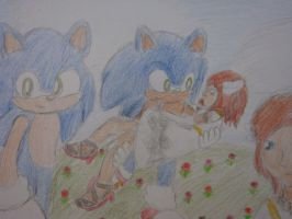 4: Sonic and Elise by Open-your-Heart