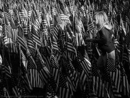 Through the Flags of the Fallen by KBeezie