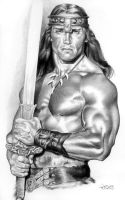 conan the destroyer by wendelin