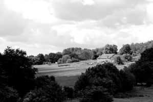 Idyllic Country Life in black and white by Niophee