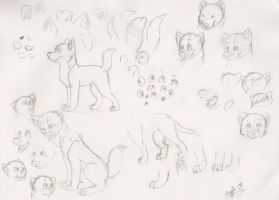 General Canine Tutorial by catz1313