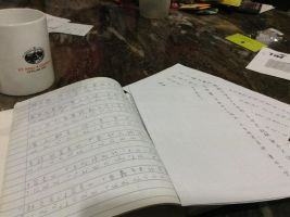 Work... Chinese Work. by Musa-Eyre