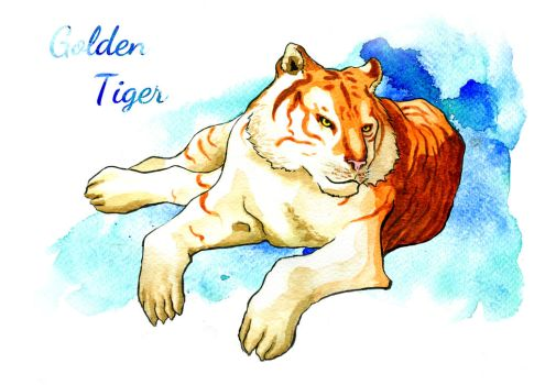 Golden Tiger by Elica-Prin