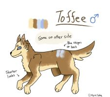 Toffee Ref by whiitecobalt