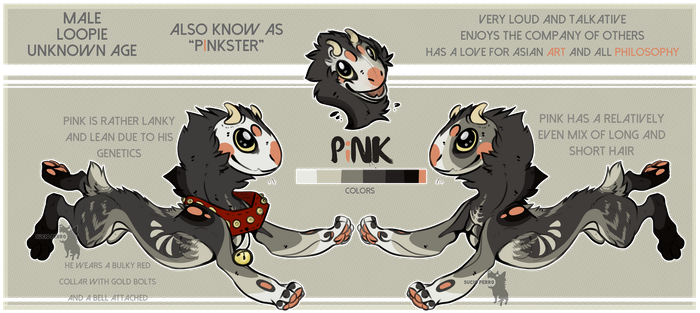 Pink Reference:. Official by SucioPerro