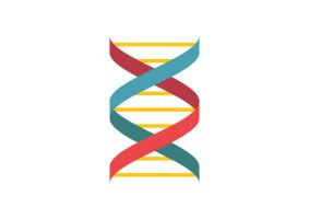 DNA Flat Style Vector Icon by superawesomevectors