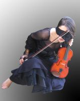 AlicelefayStock Violin 110 by Cutoutstock