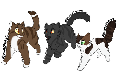 Emberkit ,Dust Muzzle and  Morning whisker by Nizumifangs