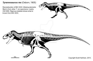 A T. rex named Stan: Version 3.0 by ScottHartman