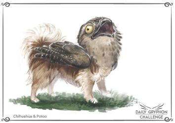 Gryphon Challenge 08 : Chihuahua and Potoo by Pechschwinge