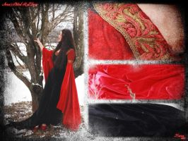 Blood Red Arwen's dress by lady-narven