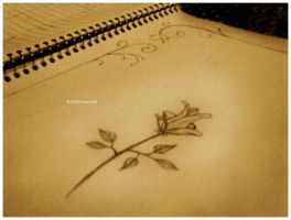 Memories Flower -New Editing- by thefreewolf