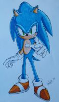 Sonic The Hedgehog by MaskedGolem