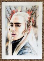 the elvenking by llegolas