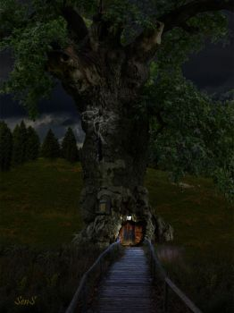 The tree house by Allansens