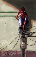 Spider-Man by MetaWorks