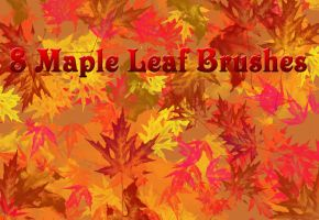 8 Large Maple Leaf Brushes by Thy-Darkest-Hour